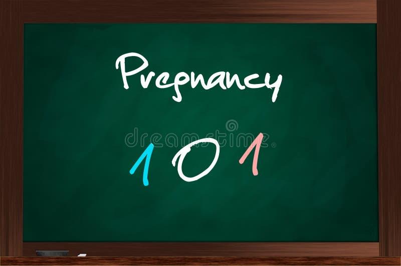 Zwangerschap 101 stock illustratie