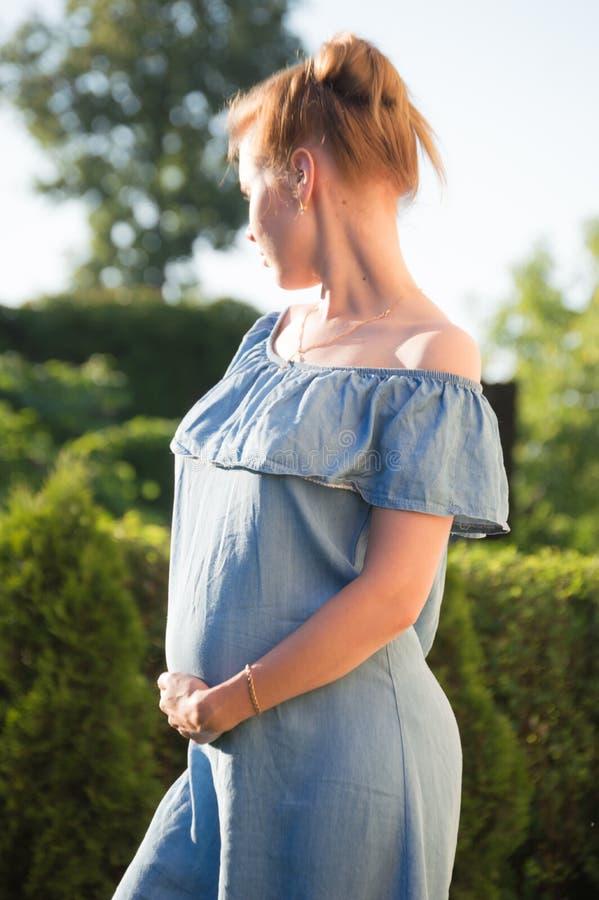 Zwangerschap royalty-vrije stock afbeelding