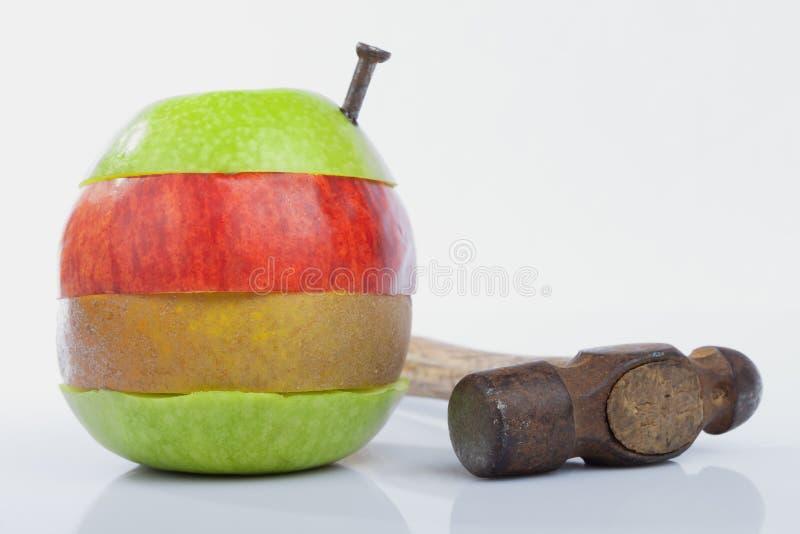 Zwangsüberfahrt von Apfelspezies eine Metapher über Experimente herein lizenzfreie stockfotos