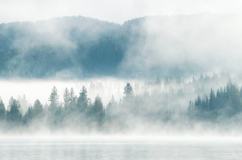 Zware mist in de vroege ochtend op een bergmeer stock afbeeldingen