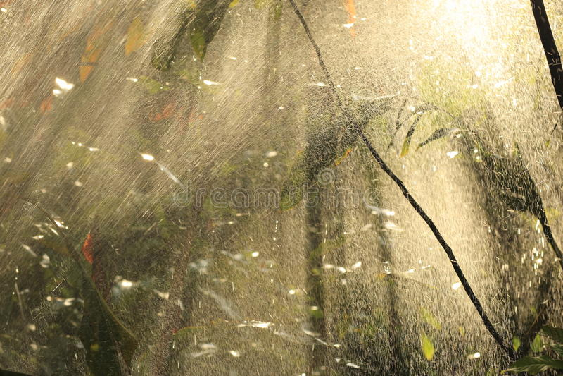 Zware regen tegen de zon. royalty-vrije stock foto's
