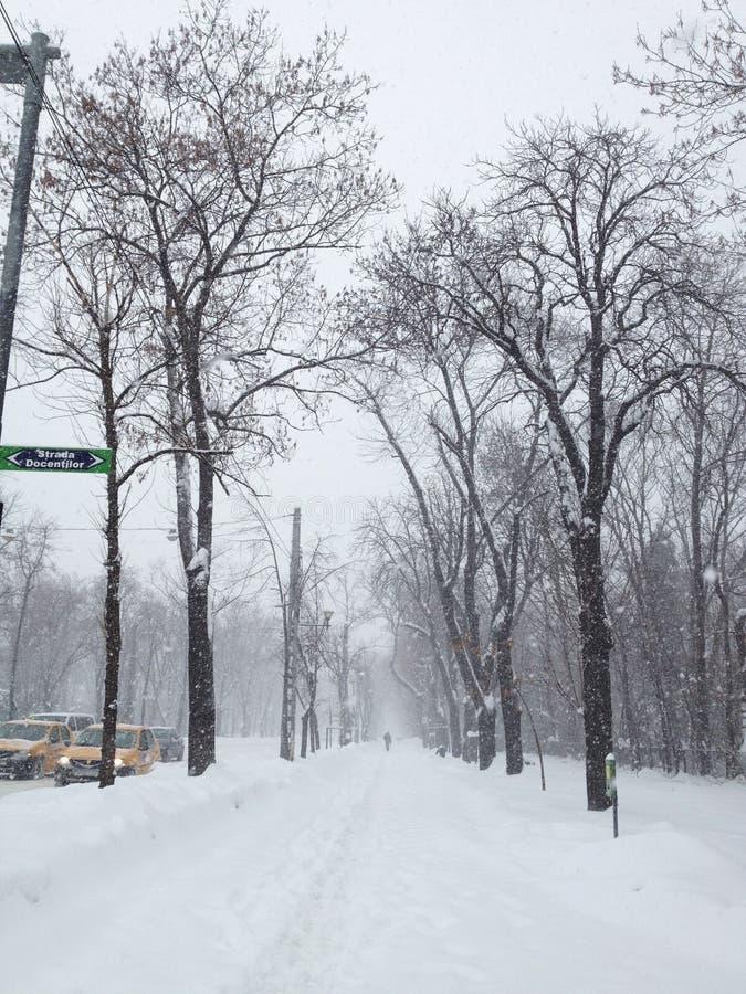 Zware sneeuw royalty-vrije stock foto's