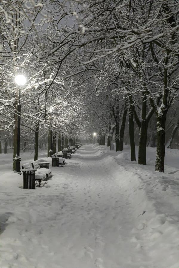 Zware sneeuwval in Moskou Nachtmening van parken en wegen tijdens een sneeuwval Instorting van openbare diensten stock foto