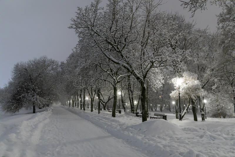 Zware sneeuwval in Moskou Nachtmening van parken en wegen tijdens een sneeuwval Instorting van openbare diensten royalty-vrije stock foto