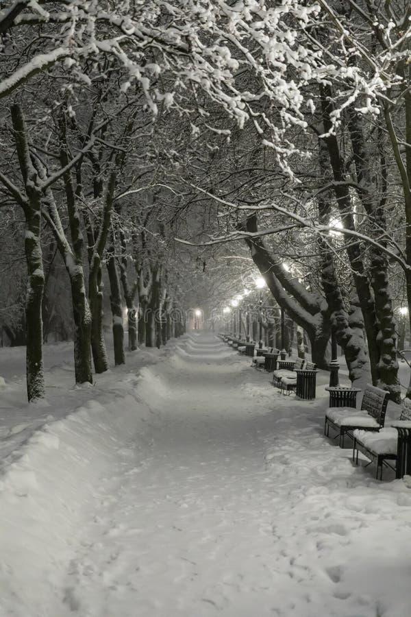 Zware sneeuwval in Moskou Nachtmening van parken en wegen tijdens een sneeuwval Instorting van openbare diensten stock foto's