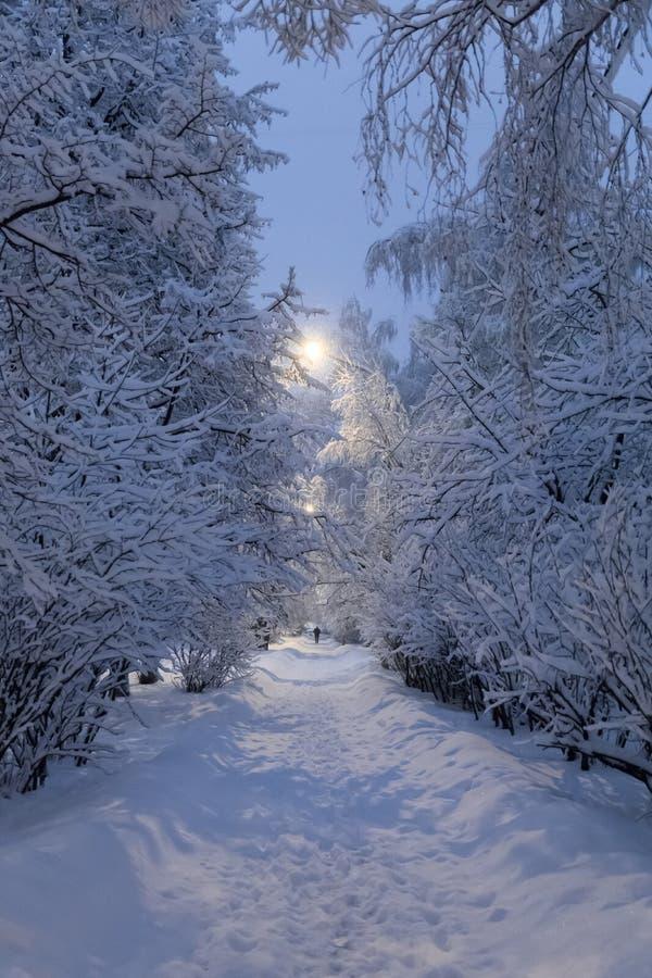 Zware sneeuwval in Moskou Nachtmening van parken en wegen tijdens een sneeuwval Instorting van openbare diensten stock afbeelding