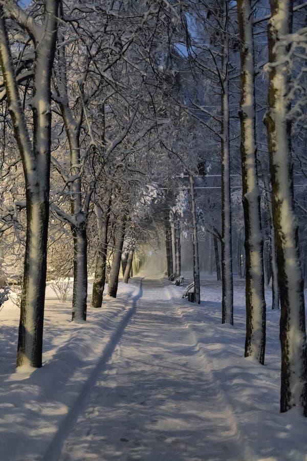 Zware sneeuwval in Moskou Nachtmening van parken en wegen tijdens een sneeuwval Instorting van openbare diensten royalty-vrije stock afbeeldingen