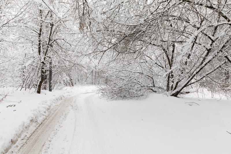 Zware sneeuwval in Moskou Snow-covered wegen en gevallen bomen tijdens een sneeuwval Instorting van openbaar vervoer royalty-vrije stock afbeelding