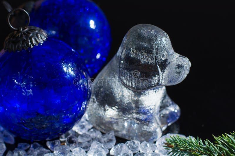 Zwart, blauw en wit, Ruggegraat horoscop, 2018 Nieuwjaar van hond, gla royalty-vrije stock foto
