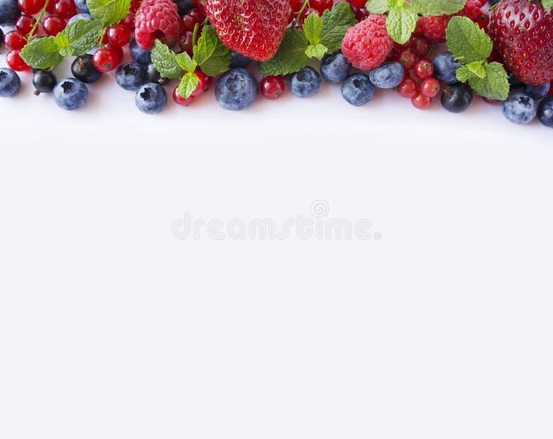 Zwart-blauwe en rode vruchten Rijpe rode aalbessen, aardbeien, frambozen, bosbessen en blackcurrants op witte achtergrond royalty-vrije stock foto