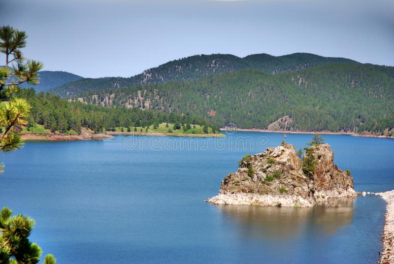 Zwart heuvelsbos in Zuid-Dakota royalty-vrije stock foto's