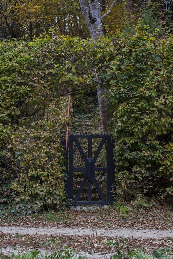 Zwart Houten Forest Gate royalty-vrije stock foto