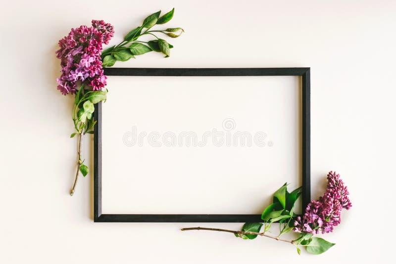 Zwart kader, lilac bloemen op witte achtergrond royalty-vrije stock afbeeldingen
