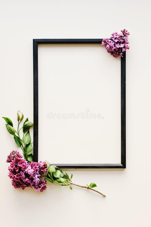 Zwart kader, lilac bloemen op witte achtergrond royalty-vrije stock fotografie