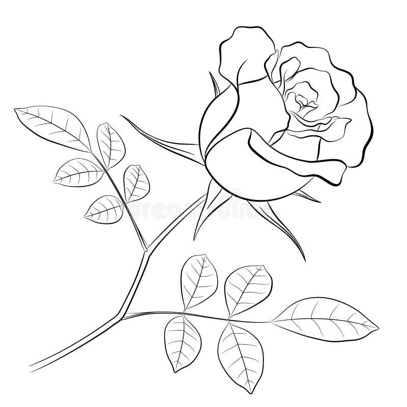 Zwart overzicht van een roze bloem met een stam en twee bladeren royalty-vrije illustratie