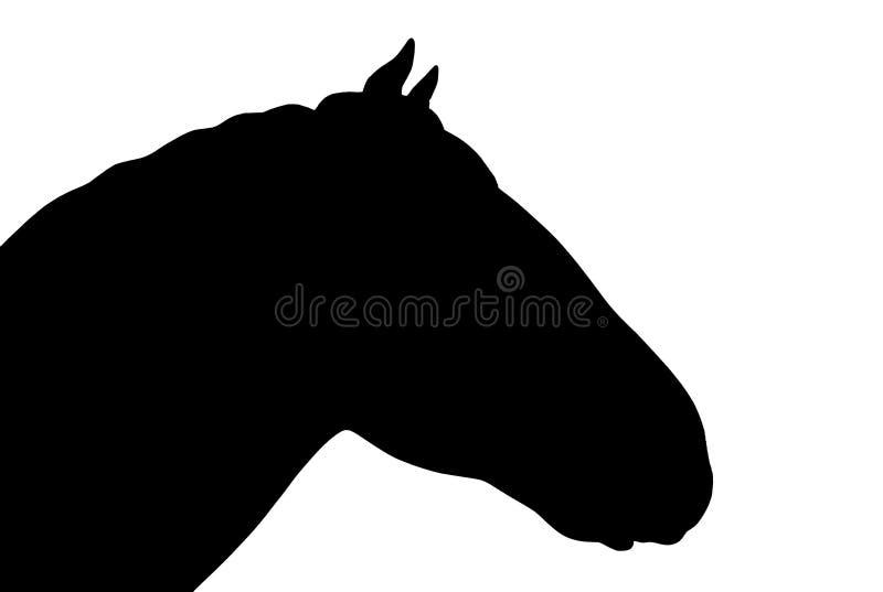 Zwart paardhoofd over witte achtergrond stock foto