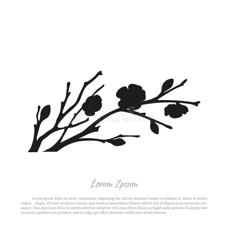 Zwart silhouet van sakuratakken op een witte achtergrond bloei vector illustratie