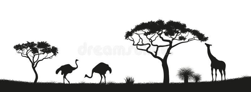 Zwart silhouet van struisvogel, giraf in savanne Dieren van Afrika Afrikaans Landschap Panorama van wilde aard stock illustratie
