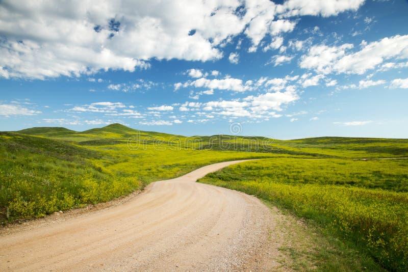 Zwart Van Zuid- heuvels Dakota royalty-vrije stock fotografie