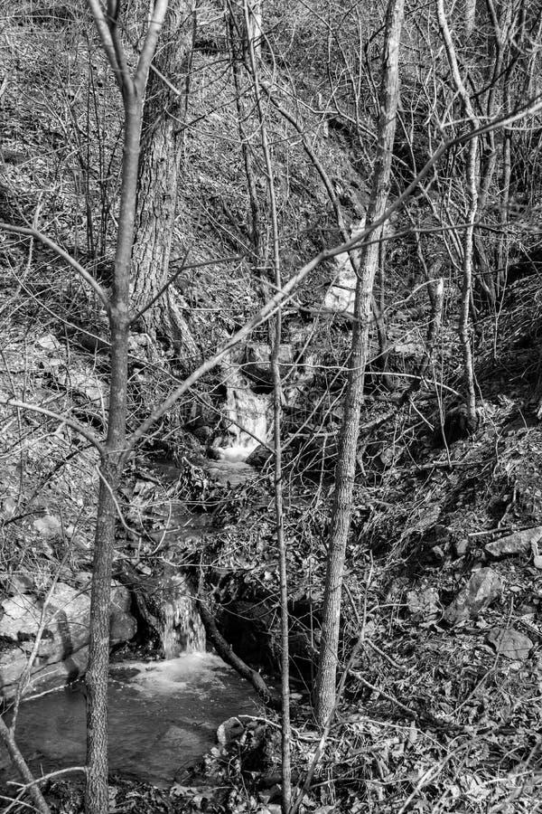 Zwart-wit Beeld van een Waterval van de Bergcascade royalty-vrije stock afbeeldingen