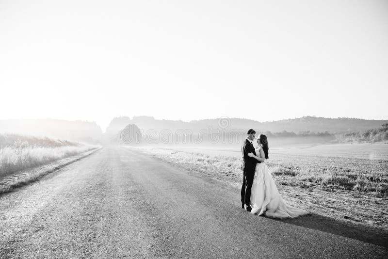 Zwart-wit beeld van schitterend huwelijkspaar stock fotografie