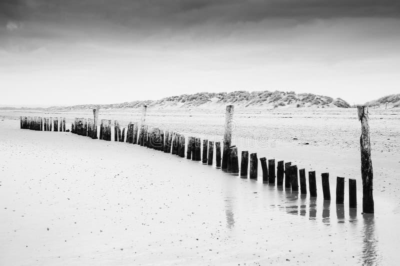 Zwart-wit beeld van strand at low tide met houten postenlan royalty-vrije stock fotografie