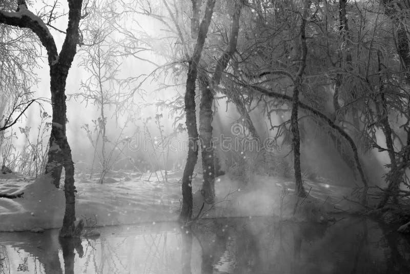Zwart-wit de winterlandschap stock fotografie