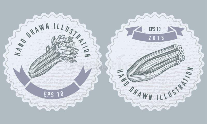 Zwart-wit etikettenontwerp met illustratie van selderie vector illustratie