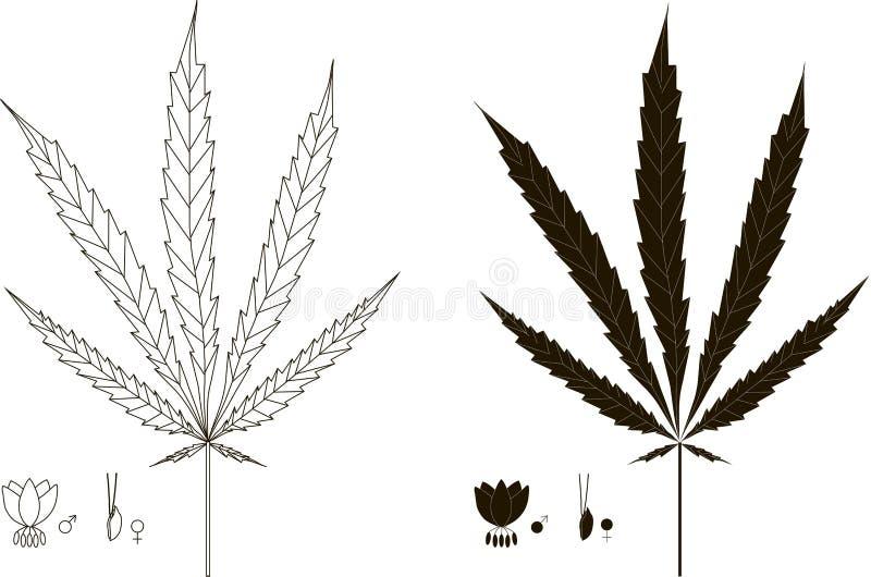 Zwart-wit grafisch silhouet, overzicht van cannabisblad, bloemen royalty-vrije illustratie