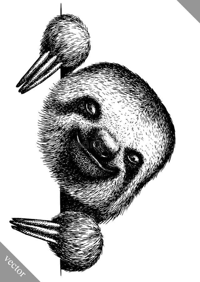 Zwart-wit graveer geïsoleerde luiaard vectorillustratie stock illustratie