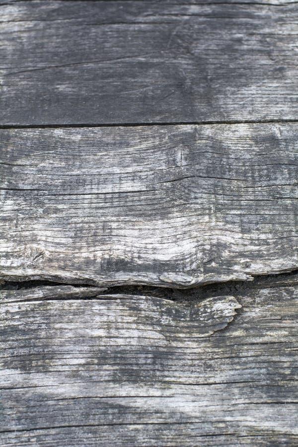 Zwart-wit hout met barsten stock fotografie