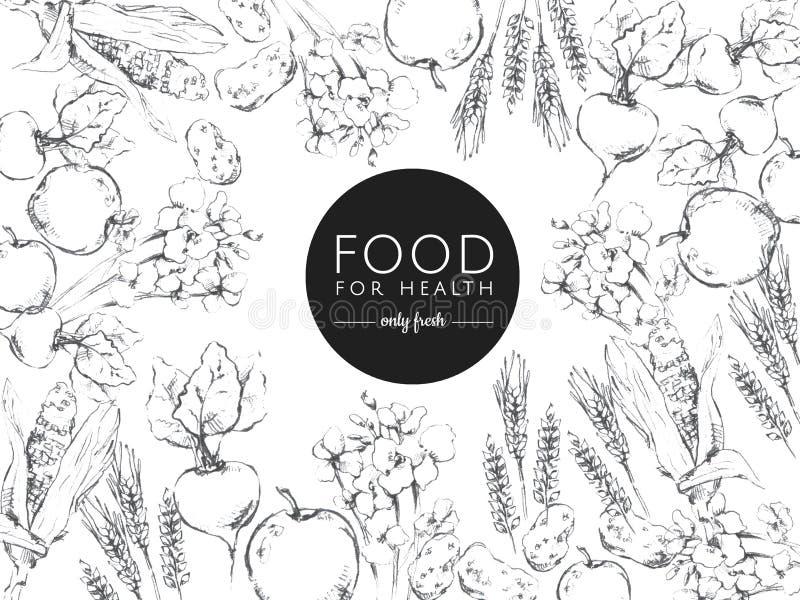 Zwart-wit illustratie gezond voedsel vector illustratie