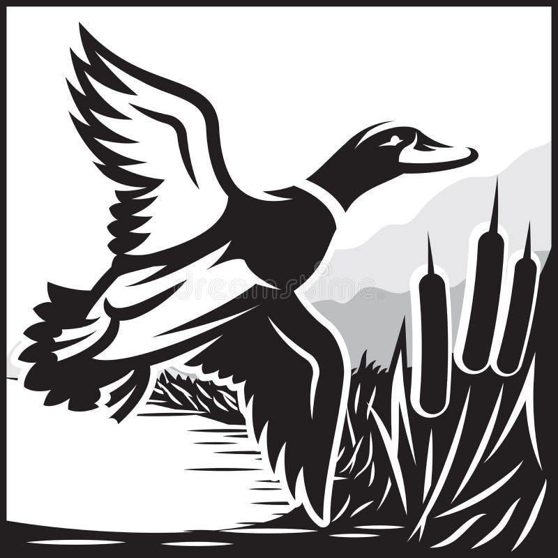 Zwart-wit illustratie met vliegende wilde eend over het water royalty-vrije illustratie