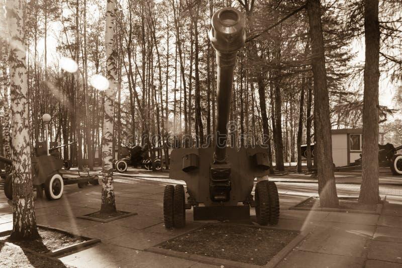 Zwart-wit kanon royalty-vrije stock foto