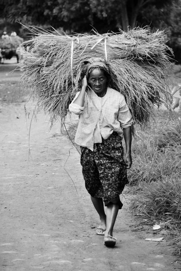 Zwart-wit Myanmar vrouwen dragend stro royalty-vrije stock afbeeldingen