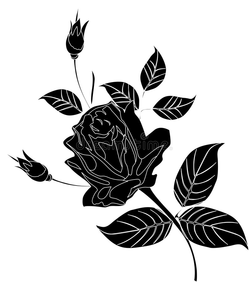 Zwart-wit nam bloem toe royalty-vrije illustratie