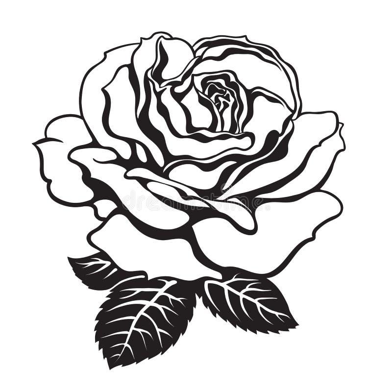 Zwart-wit nam pictogram met bladeren toe Hand getrokken vector stock illustratie