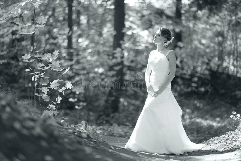 Zwart-wit portret van bruid in zonnig park stock fotografie