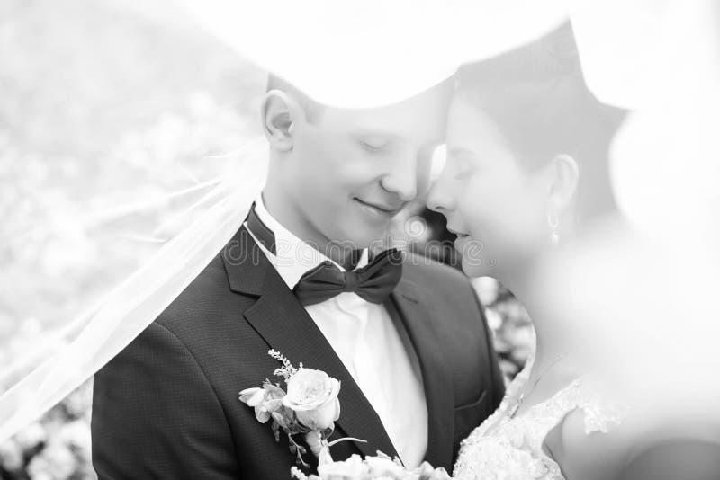 Zwart-wit portret van bruidegom en bruid Behandeld met sluier royalty-vrije stock foto's