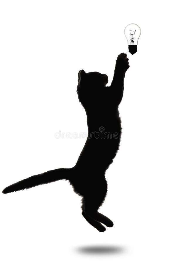 Zwart-wit silhouet van weinig katje die naar omhoog op w springen royalty-vrije stock afbeelding