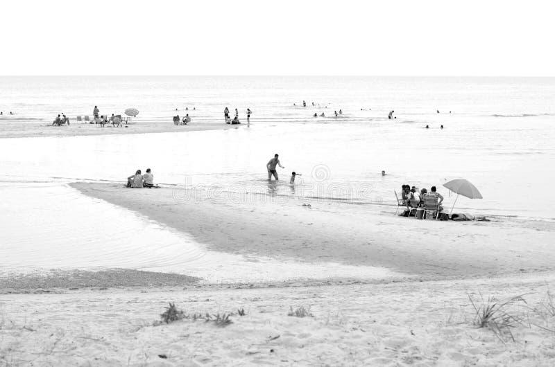 Zwart-wit strandlandschap stock afbeeldingen