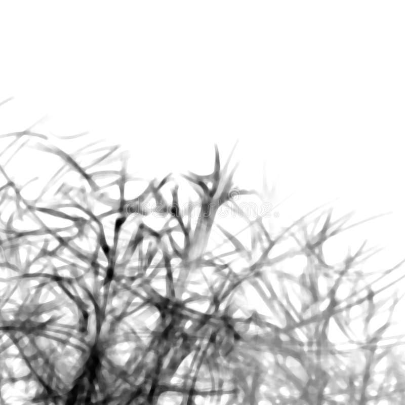 Zwart-witte Abstracte Achtergrond met schaduwenlijnen van installatiestakken stock illustratie