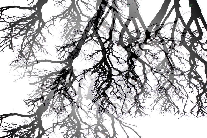 Zwart-witte abstractie royalty-vrije stock foto's