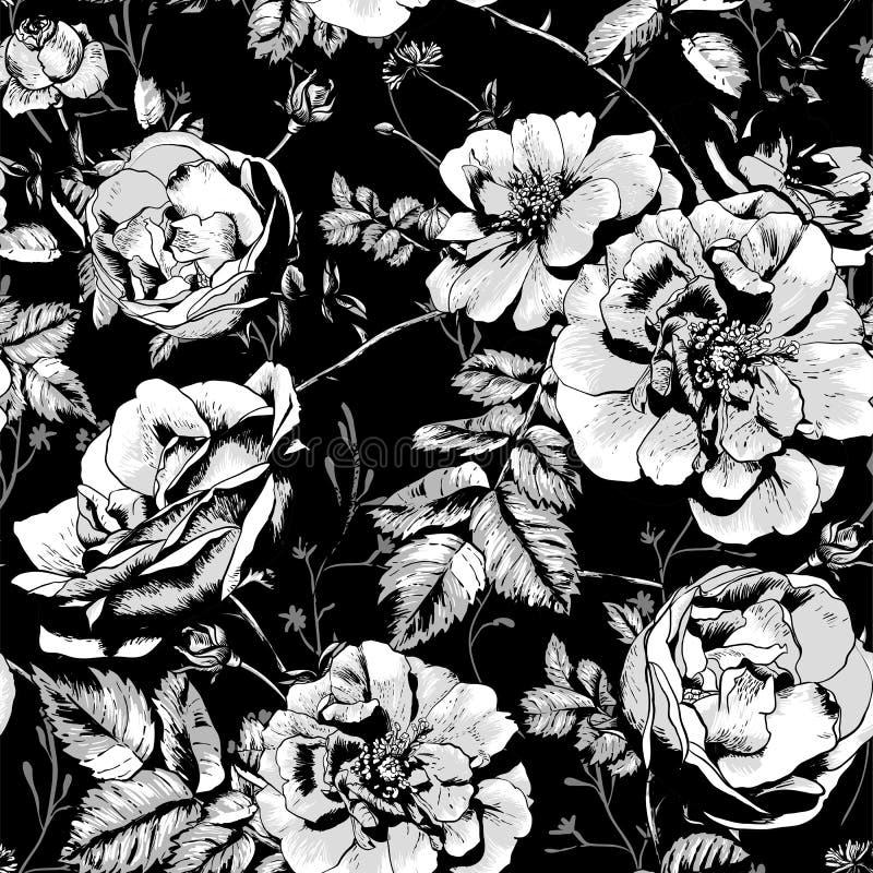 Zwart-witte Bloemen Naadloze Achtergrond stock illustratie