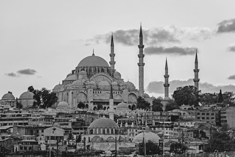 Zwart-witte cityscape in Istanboel royalty-vrije stock fotografie