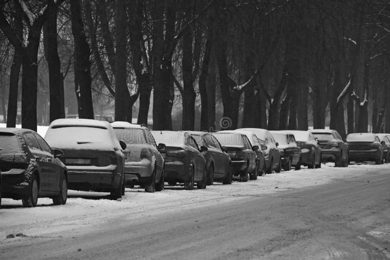 Zwart-witte die auto's aan de kant van de weg dichtbij het stadspark worden geparkeerd royalty-vrije stock foto