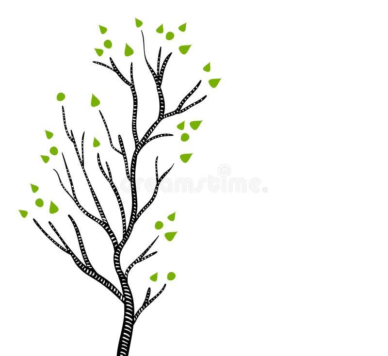 Zwart-witte esp of berkboom in de lente met groene bladeren, vector royalty-vrije illustratie