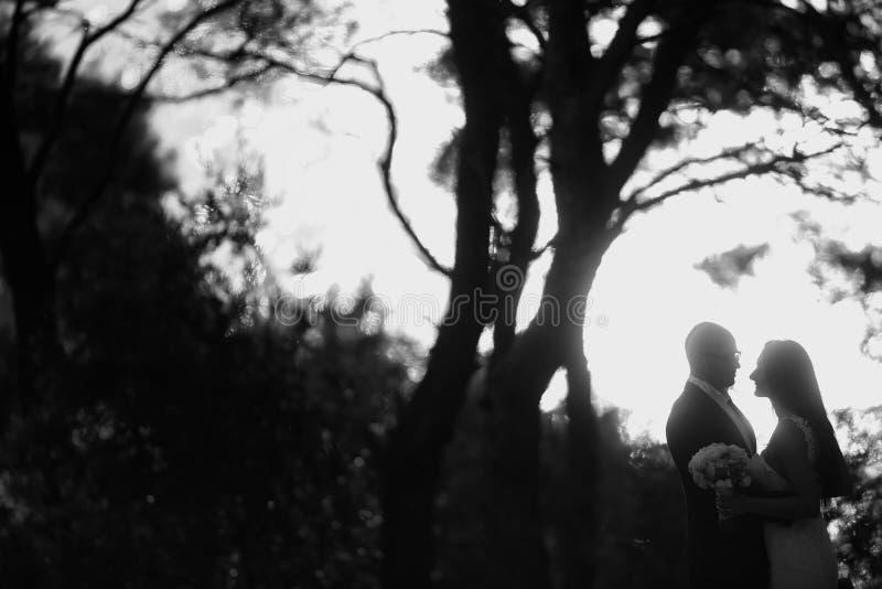 Zwart-witte foto van een bruidegom en een bruid royalty-vrije stock afbeelding