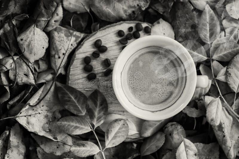 Zwart-witte foto van een kop van koffie op een boomstomp onder F royalty-vrije stock afbeeldingen