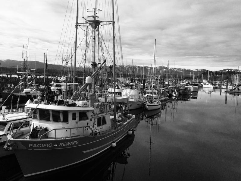 Zwart-witte jachthaven royalty-vrije stock foto
